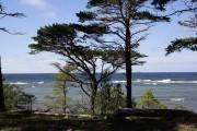 Gotland 2010_027