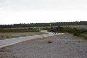 Gotland 2010_055