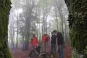 Vogesen 2011 hp 010